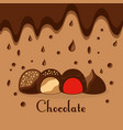 chocolate candies drops melted dessert card vector image vector image