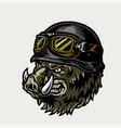 colorful angry biker wild boar head