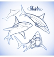 Graphic collection of sharks vector image vector image