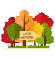 isolated with autumn forest with a wooden pointer vector image