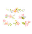 set of isolated flat flower on white vector image vector image