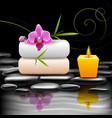 Spa dark background vector image vector image