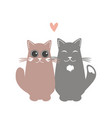 two cats in love valentine day greeting card vector image