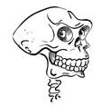 cartoon image of ancient skull vector image vector image