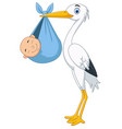 cartoon stork carrying a newborn vector image vector image