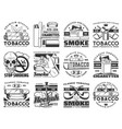 cigarette pack cigar pipe tobacco leaf icons vector image vector image