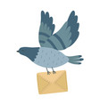 flying post pigeon with a letter isolated vector image vector image