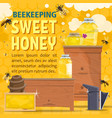 natural honey sweet food with bees and hive vector image vector image