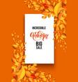 orange season frame vector image vector image