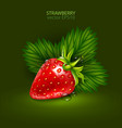red berry of a ripe strawberry with leaves on a vector image