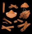 set of cinnamon sticks and powder aromatic vector image