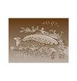 speckled trout vector image
