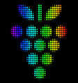 spectral colored dot grapes icon vector image vector image