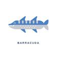 Barracuda sea carnivorous fish geometric flat