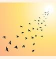 flock flying birds towards bright sun vector image