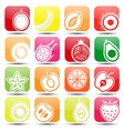 fruits icons2 vector image vector image