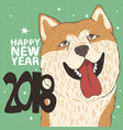 funny portrait of dog breed akita inu vector image