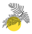 mimosa line art modern botanical design perfect f vector image vector image