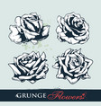 set grungy roses vector image