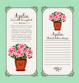 vintage label with potted flower azalea vector image vector image