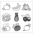 Set of Fruit Linear Icons vector image