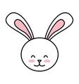 cute rabbit isolated icon design vector image
