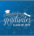 on seamless graduations vector image vector image