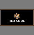 pe hexagon logo design inspiration vector image vector image