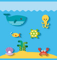 sea life flat draw vector image vector image