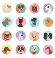 seamless background with dogs icon flat vector image vector image