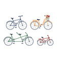 two seaters man and woman kids bicycle isolated vector image