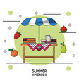 white background starry poster of summer picnic of vector image