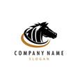 black head horse logo vector image