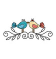 cute couple of birdies vector image vector image