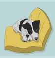 dog lies on pillow vector image vector image