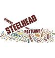 erie steelhead flies text background word cloud vector image vector image