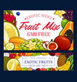 exotic pineapple banana grapes and other fruits vector image vector image