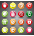 fruits icons5 vector image