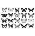 hand drawn butterflies collection vector image