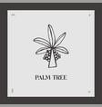 hand drawn palm tree logotype coco vector image vector image