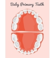 Human teeth infographic Teeth Infographic vector image vector image