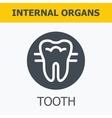 Internal organs - tooth vector image vector image