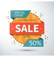 Sale banner Special offer template vector image vector image