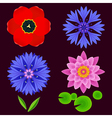 Set of flowers lotus cornflower tulip isolated vector image