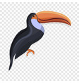 toucan icon cartoon style vector image vector image