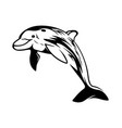 very cute dolphin which jump out vector image