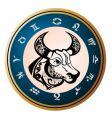 zodiac signs taurus vector image vector image