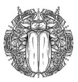 black and white beetle over sacred geometry vector image vector image