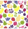 Fruits and berries seamless background vector image