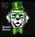 head a labrador retriever dog and elements vector image vector image
